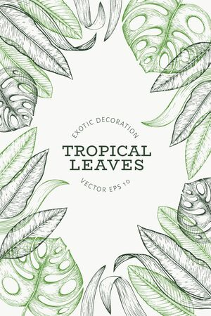 Tropical plants banner design. Hand drawn tropical summer exotic leaves illustration. Jungle leaves, palm leaves engraved style. Retro background design