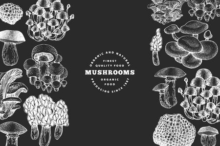 Mushrooms design template. Vector hand drawn illustrations on chalk board. Mushroom in vintage style. Autumn food background.