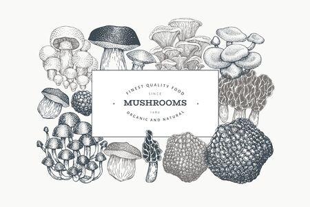 Mushrooms design template. Vector hand drawn illustrations. Mushroom in vintage style. Autumn food background.