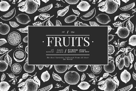 Citrus design template. Hand drawn vector fruit illustration on chalk board. Engraved style banner. Retro citrus frame.