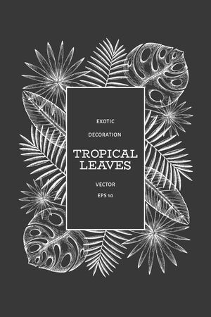 Tropical plants banner design. Hand drawn tropical summer exotic leaves illustration on chalk board. Jungle leaves, palm leaves engraved style. Retro background design 版權商用圖片 - 130105080