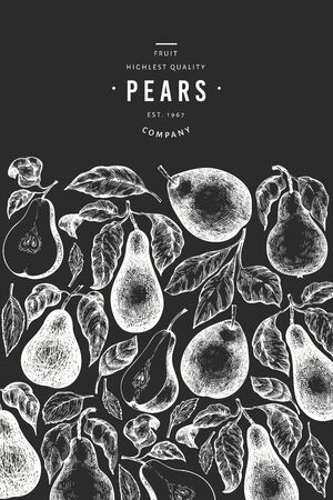 Pear design template. Hand drawn vector garden fruit illustration on chalk board. Engraved style garden fruit frame. Vintage botanical banner.