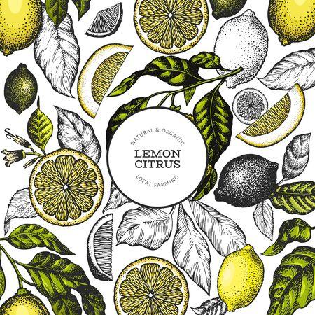 Lemon tree banner template. Hand drawn vector fruit illustration. Engraved style frame. Retro citrus background.