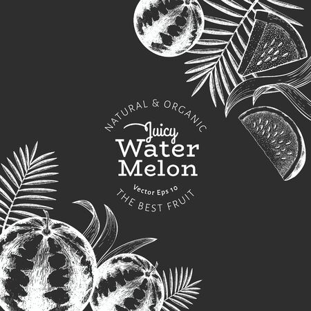 Watermelon and tropical leaves design template. Hand drawn vector exotic fruit illustration on chalk board. Engraved style fruit frame. Vintage botanical banner.