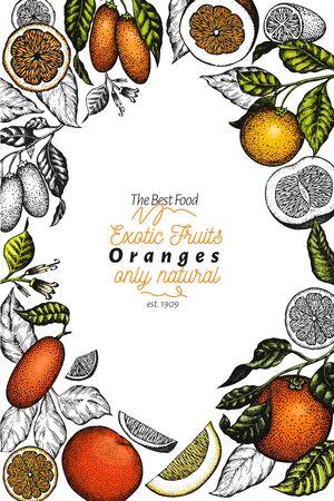 Citrus design template. Hand drawn vector colour fruit illustration. Engraved style frame. Retro citrus banner. Çizim