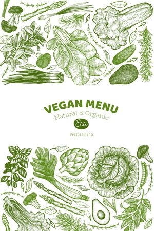 Green vegetable design template. Hand drawn vector food illustration. Engraved style vegetable banner. Vintage botanical banner. Ilustracja