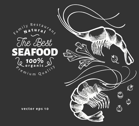 Prawns illustrations. Hand drawn vector seafood illustration on chalk board. Engraved style. Retro shrimps