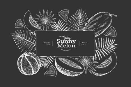Melons and watermelons with tropical leaves design template. Hand drawn vector exotic fruit illustration on chalk board. Engraved style fruit banner. Vintage botanical frame.