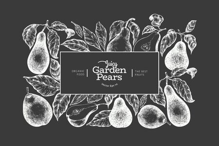 Pear design template. Hand drawn vector garden fruit illustration on chalk board. Engraved style garden vintage botanical banner.