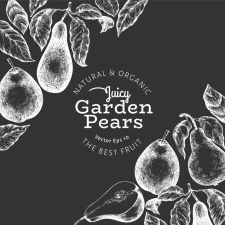Pear design template. Hand drawn vector garden fruit illustration on chalk board. Engraved style garden vintage botanical banner.