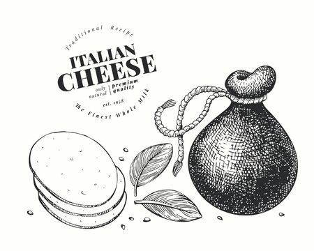 Italian cheese illustration. Hand drawn vector dairy illustration. Engraved style provolone head. Retro food illustration. 矢量图像