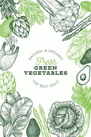 Green vegetable design template. Hand drawn vector food illustration. Engraved style vegetable banner. Vintage botanical banner. Illusztráció