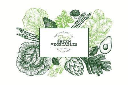 Green vegetable design template. Hand drawn vector food illustration. Engraved style vegetable banner. Vintage botanical banner. Çizim