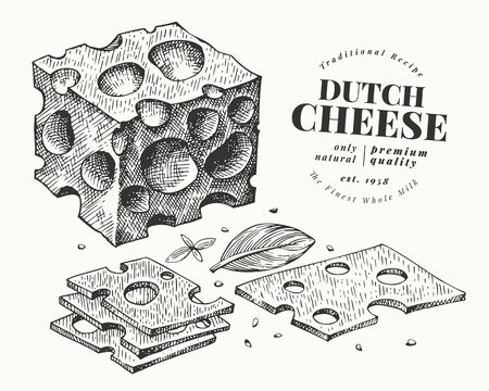 Dutch cheese illustration. Hand drawn vector dairy illustration. Engraved style maasdam slice cut. Retro food illustration. Ilustrace