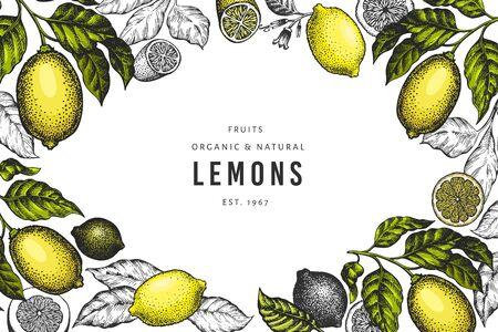 Lemon tree design template. Hand drawn vector fruit illustration. Engraved style banner. Retro citrus background.