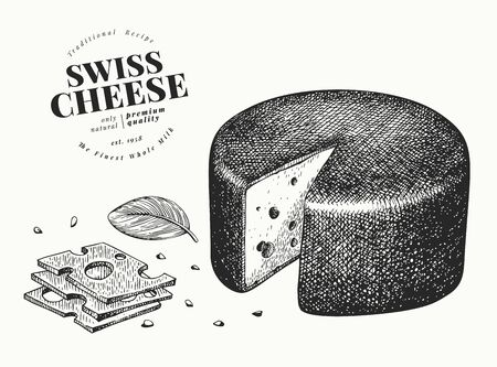 Swiss cheese illustration. Hand drawn vector dairy illustration. Engraved style emmental head. Retro food illustration.