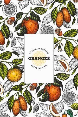 Citrus design template. Hand drawn vector color fruit illustration. Engraved style frame. Retro citrus banner. Illustration