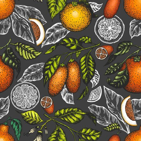 Citrus fruits seamless pattern. Hand drawn vector color fruit illustration on dark background. Engraved style background. Retro citrus banner.