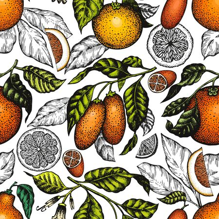 Citrus fruits seamless pattern. Hand drawn vector color fruit illustration. Engraved style background. Retro citrus banner.