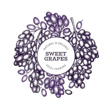 Grape design template. Hand drawn vector grape berry illustration. Engraved style vintage botanical banner. Ilustração