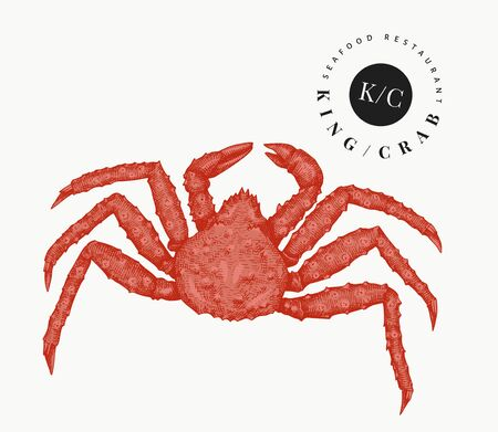 Crab illustration. Hand drawn vector seafood illustration. Engraved style crustacean. Retro lobster image.