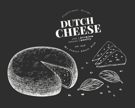 Dutch cheese illustration. Hand drawn vector dairy illustration on chalk board. Engraved style gouda head. Retro food illustration. 向量圖像