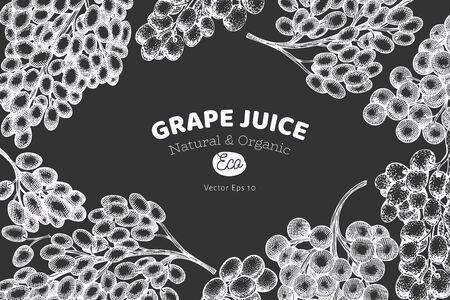 Grape design template. Hand drawn vector grape berry illustration on chalk board. Engraved style vintage botanical banner.
