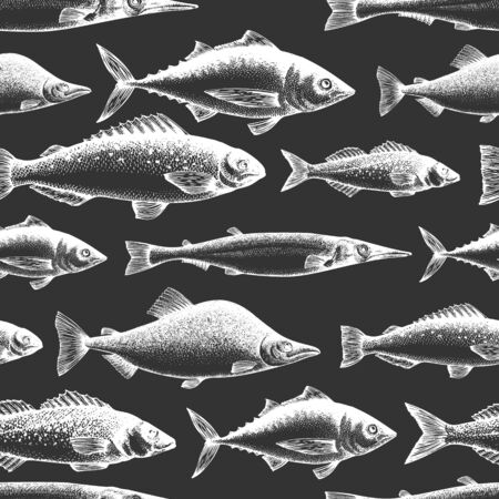 Fish seamless pattern. Hand drawn vector fishes illustration on chalk board. Engraved style. Retro different kinds of fish background.