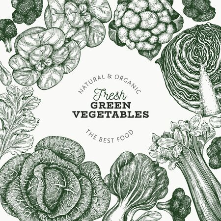 Hand drawn sketch vegetables design. Organic fresh food vector banner template. Vintage vegetable background. Engraved style botanical illustrations.