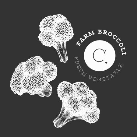 Hand drawn sketch style broccoli. Organic fresh food vector illustration on chalk board. Vintage vegetable cauliflower illustration. Engraved style botanical picture.
