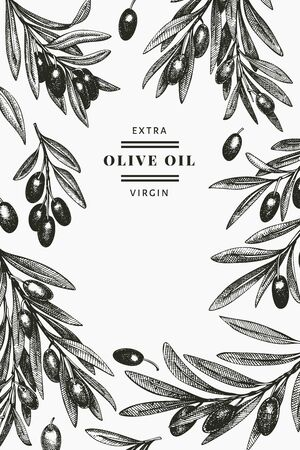Olive branch design template. Hand drawn vector food illustration. Engraved style mediterranean plant. Vintage botanical picture.