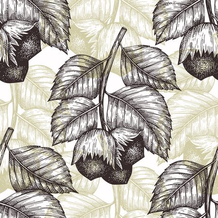 Hand drawn sketch hazelnut seamless pattern. Organic food vector illustration on white background. Retro nut illustration. Engraved style botanical background.