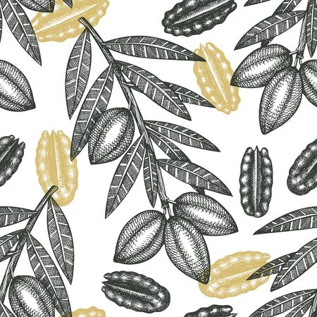 Hand drawn pecan branch and kernels seamless pattern. Organic food vector illustration on white background. Retro nut illustration. Engraved style botanical picture.