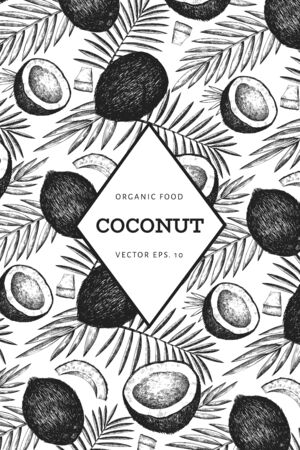 Coconut with palm leaves design template. Hand drawn vector food illustration. Engraved style exotic plant. Vector botanical tropical background.