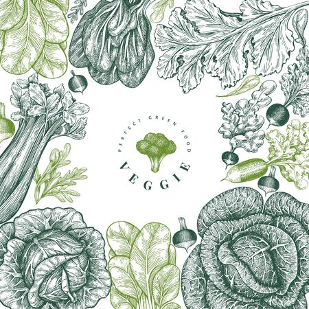 Hand drawn sketch vegetables design. Organic fresh food vector banner template. Retro vegetable background. Engraved style botanical illustrations. Illustration