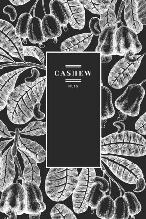 Hand drawn sketch cashew design template. Organic food vector illustration on chalk board. Vintage nut illustration. Engraved style botanical background.
