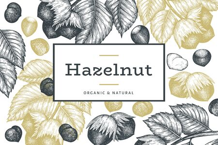 Hand drawn sketch hazelnut design template. Organic food vector illustration on white background. Vintage nut illustration. Engraved style botanical background. Ilustracja