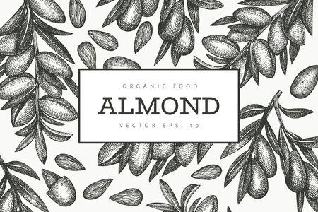 Hand drawn sketch almond design template. Organic food vector illustration. Retro nut illustration. Engraved style botanical background. Ilustracja