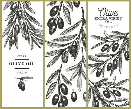 Olive branch design template. Hand drawn vector food illustration. Engraved style mediterranean plant. Vintage botanical picture.