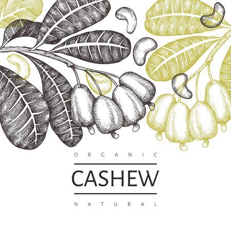 Hand drawn sketch cashew design template. Organic food vector illustration on white background. Retro nut illustration. Engraved style botanical background.