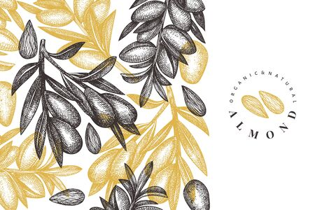Hand drawn sketch almond design template. Organic food vector illustration. Vintage nut illustration. Engraved style botanical background. Vettoriali