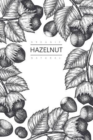 Hand drawn sketch hazelnut design template. Organic food vector illustration on white background. Retro  nut illustration. Engraved style botanical background.