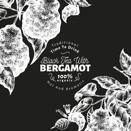 Bergamot branch design template. Kaffir lime frame. Hand drawn vector fruit illustration on chalk board. Engraved style retro citrus background. Vector Illustratie