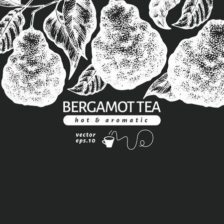 Bergamot branch design template. Kaffir lime frame. Hand drawn vector fruit illustration on chalk board. Engraved style retro citrus background. Stock Illustratie