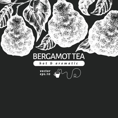 Bergamot branch design template. Kaffir lime frame. Hand drawn vector fruit illustration on chalk board. Engraved style retro citrus background. Vectores