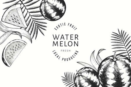 Watermelons, melons and tropical leaves design template. Hand drawn vector exotic fruit illustration. Engraved style fruit frame. Vintage botanical banner.