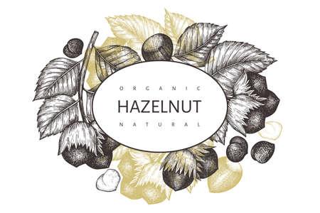 Hand drawn sketch hazelnut design template. Organic food vector illustration on white background. Vintage nut illustration. Engraved style botanical background.
