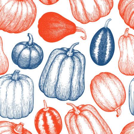 Pumpkin seamless pattern. Vector hand drawn illustrations. Thanksgiving backdrop in vintage style with pumpkin harvest. Autumn background. 矢量图像