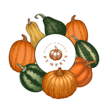 Pumpkin color design template.  Thanksgiving backdrop in retro style with pumpkin harvest.