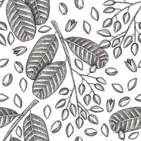 Hand drawn pistachio branch and kernels seamless pattern. Organic food illustration on white background. Vintage nut illustration. Engraved style botanical background.